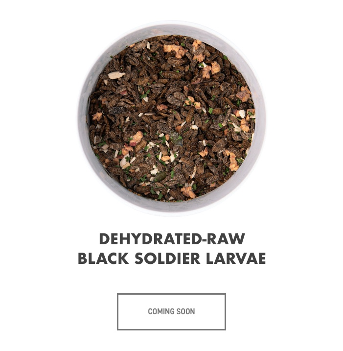 dehydrated-raw-black-soldier-larvae-slider.jpg