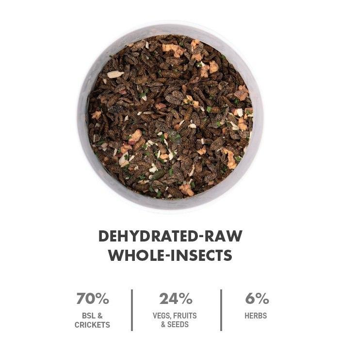 dehydrated-raw-black-soldier-larvae-slider-new